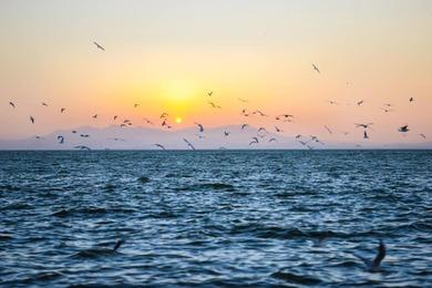 Coucher de soleil sur lac Dianchi